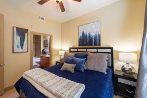 Two Bedroom Apartments for Rent in Houston, TX - Model Bedroom with Bathroom View